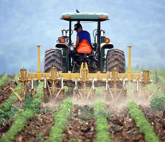 Jak szukać preparatów rolniczych